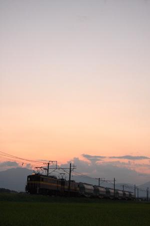 Blog959