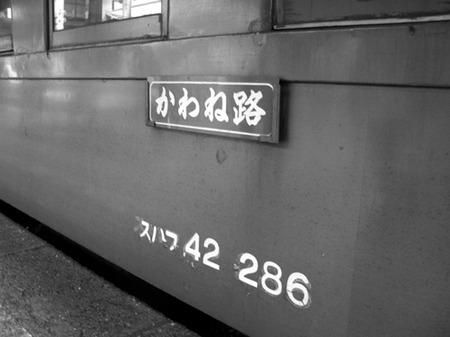 Ooigawa10