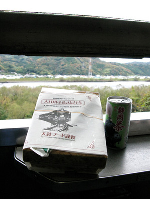Ooigawa15_4