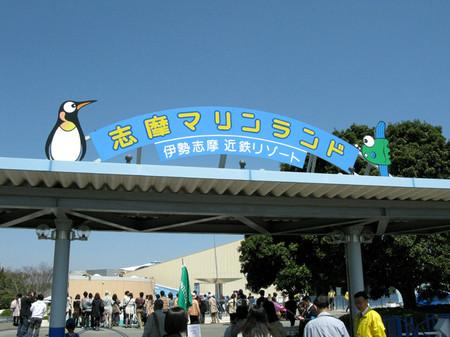 Penguin11