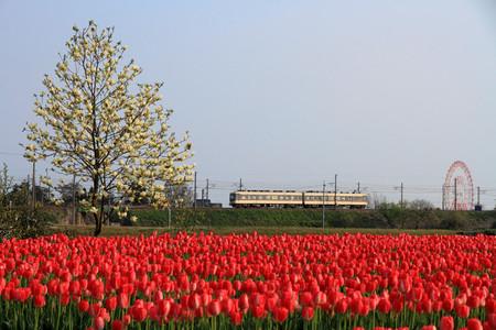 Toyama07