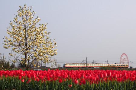 Toyama13