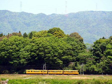 Midori02