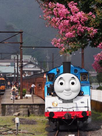 Thomas010