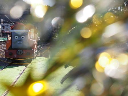 Thomas054