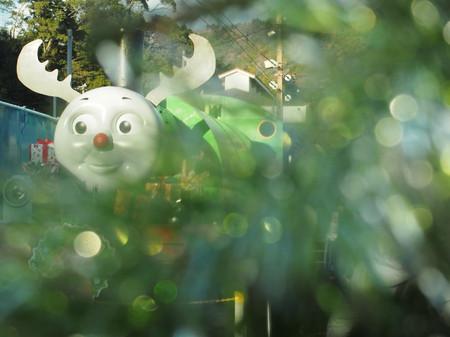 Thomas057