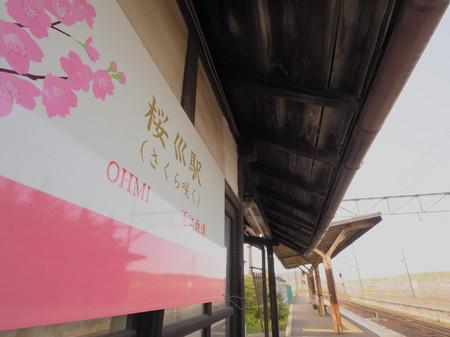 Sakura61