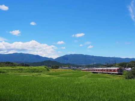 Yoshino11