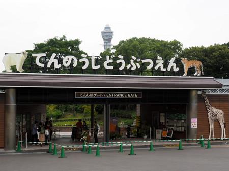 Osaka16