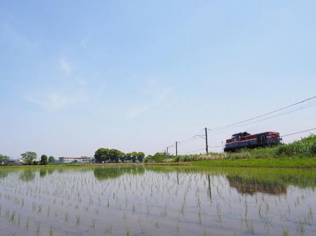 Shiratori02