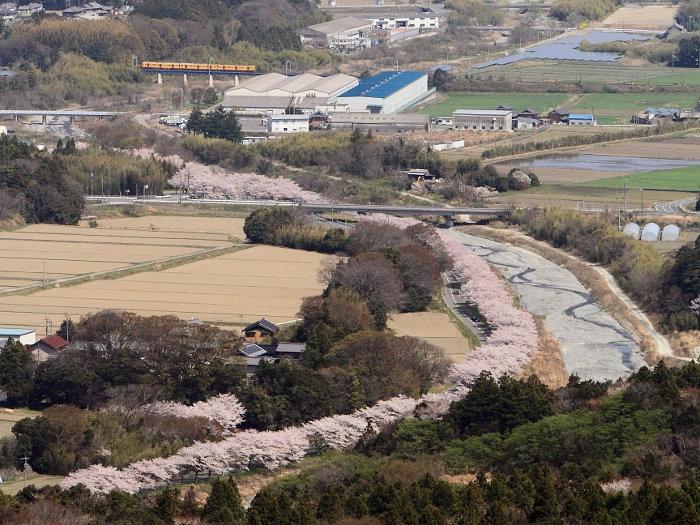 Aogawa01
