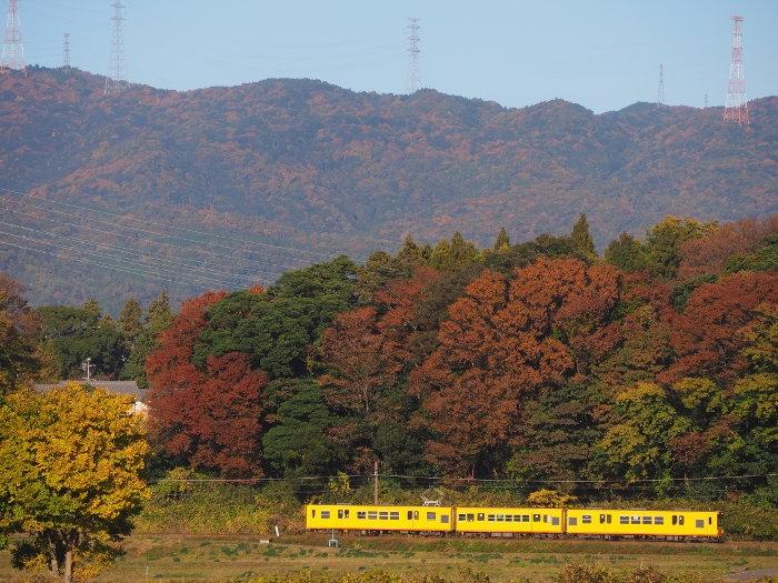 Akihoku03