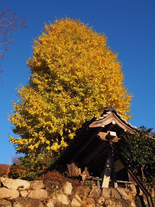 Akihoku04