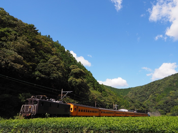 Oigawa03